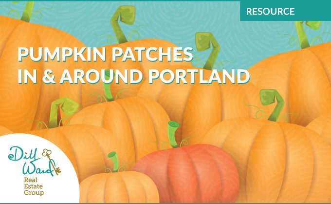 Pumpkin Patches In & Around Portland